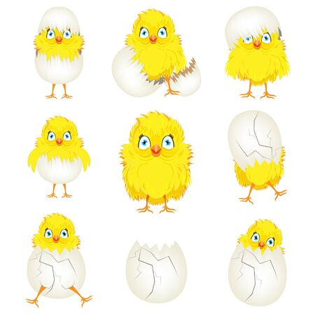 Bright color vector graphic illustration set of happy easter sunday day with traditional spring holiday symbol of cute yellow chicken in egg shell on white background