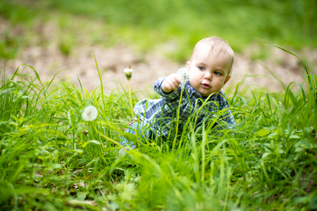 jungle boy: Interested blond baby boy touching white dandelion in green grass on natural background, horizontal photo Stock Photo
