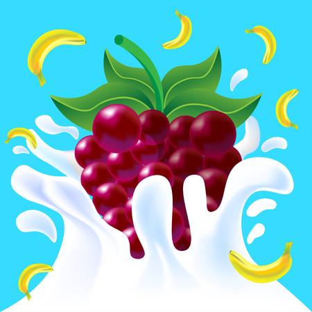 yoghurt: Purple vector fresh tasty raspberry and yellow banana falling in white milk yoghurt splash on blue background of vitamine fruit berry