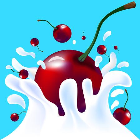 yoghurt: Red vector fresh tasty cherry falling in white milk yoghurt splash on blue background of vitamine fruit berry