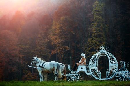 Retro cocchiere in parrucca seduto in carrozza d'epoca di Cenerentola con i cavalli bianchi in verde bosco esterno profondo su sfondo naturale, maschera orizzontale