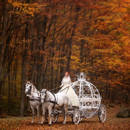 cinderella dress: Young wedding romantic couple of bride in white dress and bridegroom in suit in cinderella carriage with horses in autumn deep orange forest outdoor on natural background, square picture