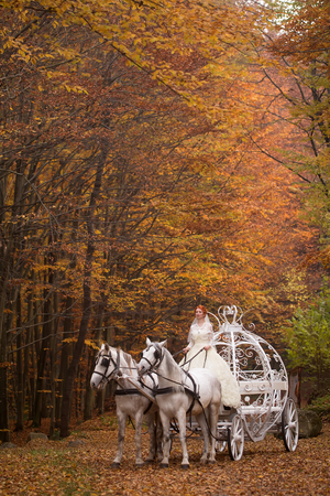 cinderella dress: Young wedding romantic couple of bride in white dress and bridegroom in suit in cinderella carriage with horses in autumn deep orange forest outdoor on natural background, vertical picture