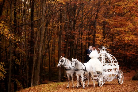 cinderella dress: Young wedding romantic couple of bride in white dress and bridegroom in suit in cinderella carriage with horses in autumn deep orange forest outdoor on natural background, horizontal picture Stock Photo
