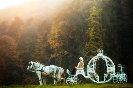 Retro cocchiere in parrucca seduto in carrozza d'epoca di Cenerentola con i cavalli bianchi in verde bosco esterno profondo su sfondo naturale, maschera orizzontale Archivio Fotografico