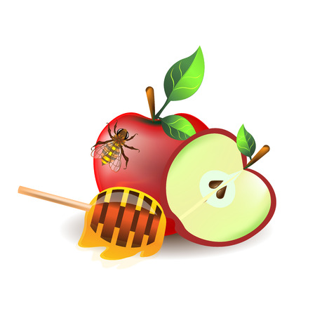 Bright colored vector set of bee on red apple and half dipstick with honey drops on white background