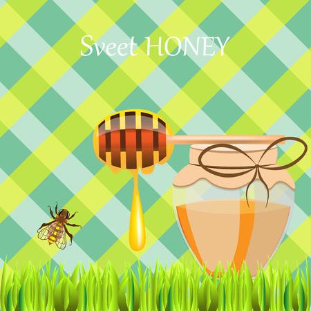 Heldere gekleurde vectorreeks van de peilstok van de bijenpot met druppels op groen gras die zoete honing op plaidachtergrond van letters voorzien
