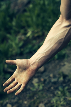 human body substance: Male muscular arm with visible veins outdoor in green grass background closeup