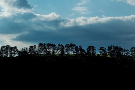 tree line: Tree line silhouette with blue cloudy sky and dark black ground, copy space Stock Photo