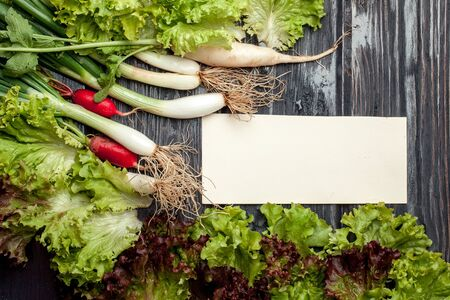 scallions: Scallions white red radish and green lettuce with empty note on wooden background Stock Photo
