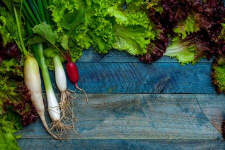 spring onions: Spring onions red white radish and green salad leaves fresh wet on wooden table background Stock Photo