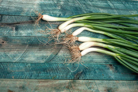 scallions: Scallions fresh spring onions on blue wooden table background Stock Photo