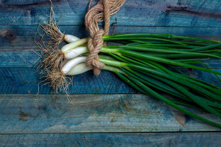 scallions: Scallions fresh spring onions roped in bunch on blue wooden table background Stock Photo