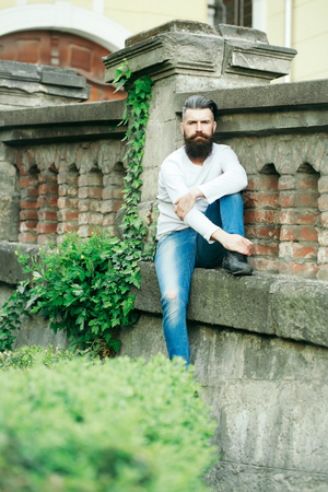 stony: Handsome young stylish hipster man with long beard in white shirt outdoor sitting on stony fence with green plant