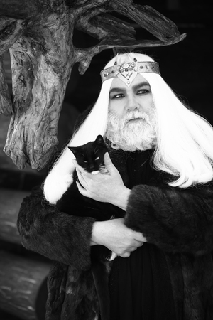 wiccan: Druid old man with long grey hair and beard with crown in fur coat holds cat black and white on dark wooden background