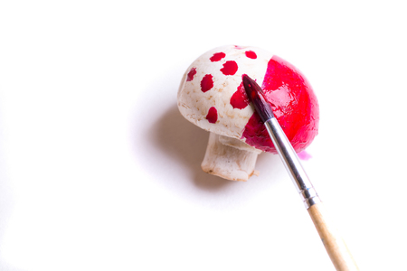 button mushroom: One champignon fresh unpeeled button mushroom painted in red color dots with paint brush isolated on white background