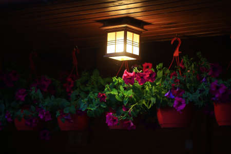 illuminating: ceiling square lamp illuminating with warm light near pink flowers hanging in pots