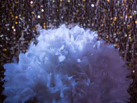 frill: white feathers on golden sequins pattern. Sparkling tinsel on wool fabric as background with frill.