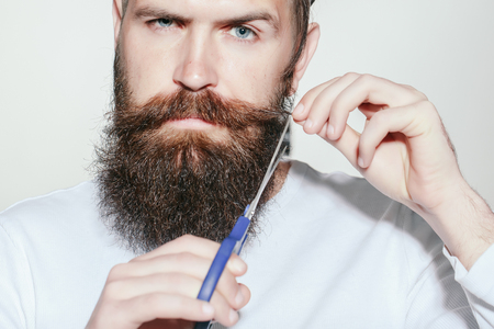long beard: handsome young man hairdresser with long beard and moustache on serious face holding scissors on grey background in studio