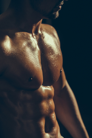 muscular body: muscular male torso six packs on wet body of athletic man training with bare chest and strong biceps on hands, closeup