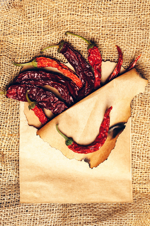 scorched: brown scorched paper envelope with dried red wrinkled chilli pepper inside on burlap background, copy space Stock Photo