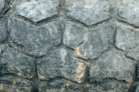 Dark stone wall on masonry background Imagens