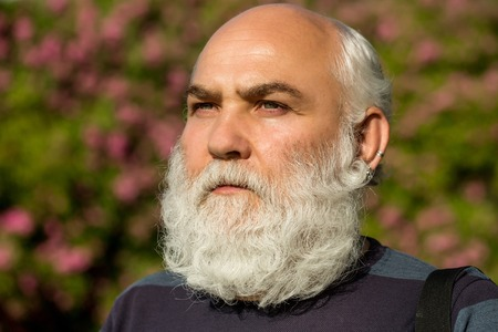 hairy male: male eye with bright striped lens and hairy eyebrow of old bearded man with wrinkled skin and long beard on serious face sunny day outdoor on natural background