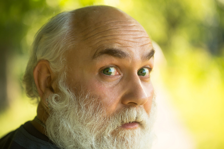 hairy male: male eye with bright dotty lens and hairy eyebrow of old bearded man with wrinkled skin and long beard on surprised face on natural background, closeup