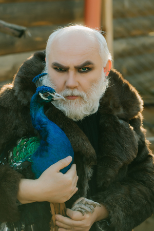 white beard: old bearded man with long white beard on serious face with makeup in fur coat holding colorful peacock bird sunny day outdoor Stock Photo