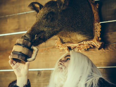 druid: Old druid man with long silver hair and beard waters stuffed boar head with wooden mug on timber background