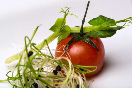 germinate: Red cherry tomato and green sprouts fresh vegetables for healthy food on white background