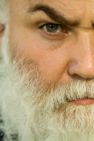 hairy male: male eye with bright striped lens and hairy eyebrow of old bearded man with wrinkled skin and long beard on serious face, closeup