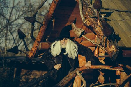 log house: Old druid man with long silver hair and beard in black Halloween hat stands outdoors on sunny day on log house background
