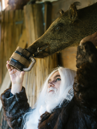 silver hair: Brutal druid old man with long silver hair and beard waters stuffed boar head with wooden mug on timber background