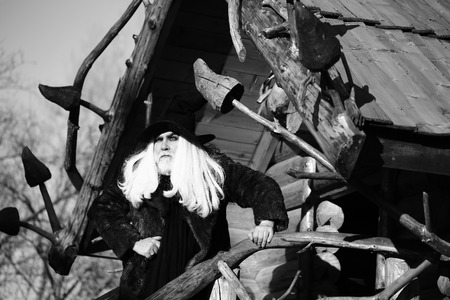 silver hair: Old druid man with long silver hair and beard in Halloween hat fur coat stands outdoors black and white on log house background Stock Photo