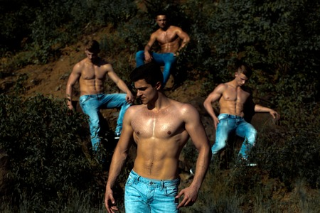 six packs: four handsome young macho men with muscular sexy body and six packs on torso in jeans sunny day outdoor on green natural background