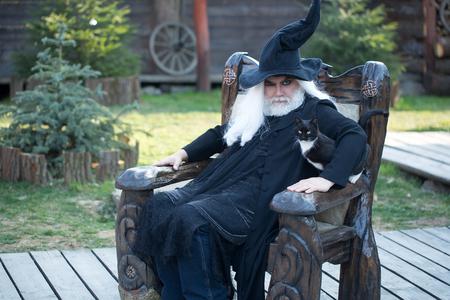 할로윈 withs 고양이에 대 한 검은 의상 모자에서 사악한 마법사 자연의 배경에 나무의 자에 앉는 다.