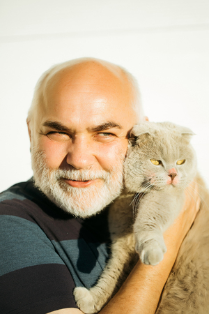 gray cat: Elderly man hairless with kind smiling handsome face silver beard holding cute gray cat domestic pet isolated on white background Stock Photo
