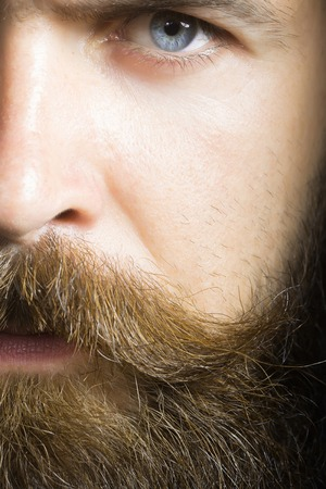 hairy: handsome sexy bearded young man hipster with long beard and mustache on serious hairy face, closeup Stock Photo