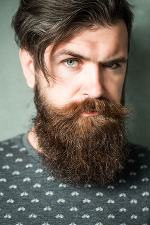 hairy closeup: handsome sexy bearded young man hipster with long beard and mustache has stylish hair on serious hairy face on grey background, closeup