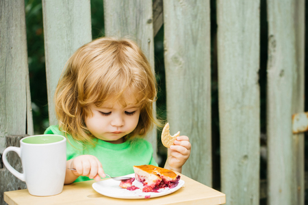 Small boy child with long blonde hair and serious face sitting at wooden table eating berry pie and biscuit with milk cup outdoor near wood fence