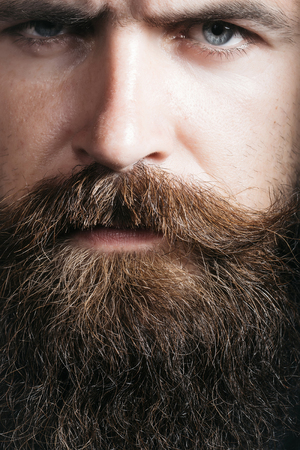 hairy closeup: handsome sexy bearded young man hipster with long beard and mustache on serious hairy face, closeup Stock Photo
