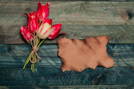 seasonal tulip flower bouquet red color on green stem in spring with rope and scorched paper on blue wooden background, closeup, copy space Stock Photo
