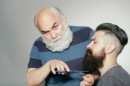 long beard: Old and young bearded men with long beard white and brown in studio on grey background. Hairdresser with scissors cutting beard Stock Photo