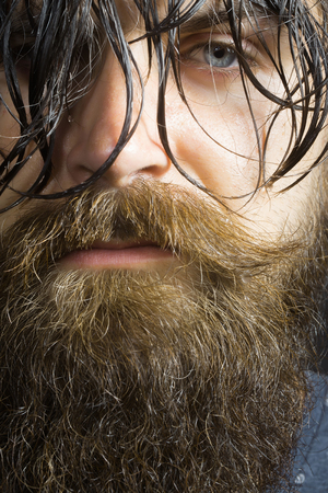 hairy closeup: handsome sexy bearded young man hipster with long beard and mustache has wet hair on serious hairy face, closeup Stock Photo