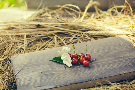 vitamine: wild berry of fresh natural healthy red cherry with green leaves on wooden board and straw or hay with angel valentine figure Stock Photo
