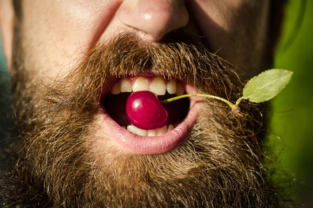 hairy closeup: handsome sexy bearded young man hipster with long beard and mustache has stylish hair on emotional hairy face sunny day outdoor holding red cherry in mouth, closeup