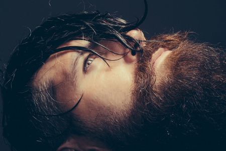 handsome bearded young man hipster with long beard and mustache has wet hair on serious hairy face, closeup