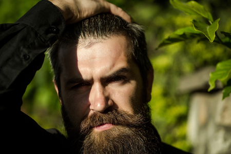 hairy closeup: handsome sexy bearded young man hipster with long beard and mustache has stylish hair on serious hairy face sunny day outdoor on green natural background, closeup