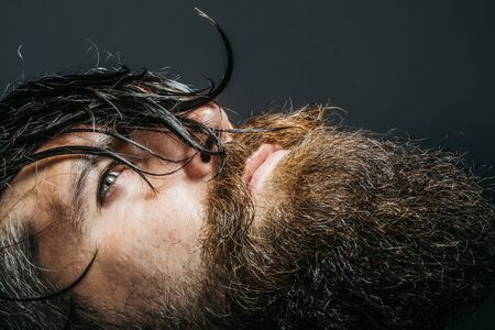 handsome sexy bearded young man hipster with long beard and mustache has wet hair on serious hairy face, closeup Stok Fotoğraf